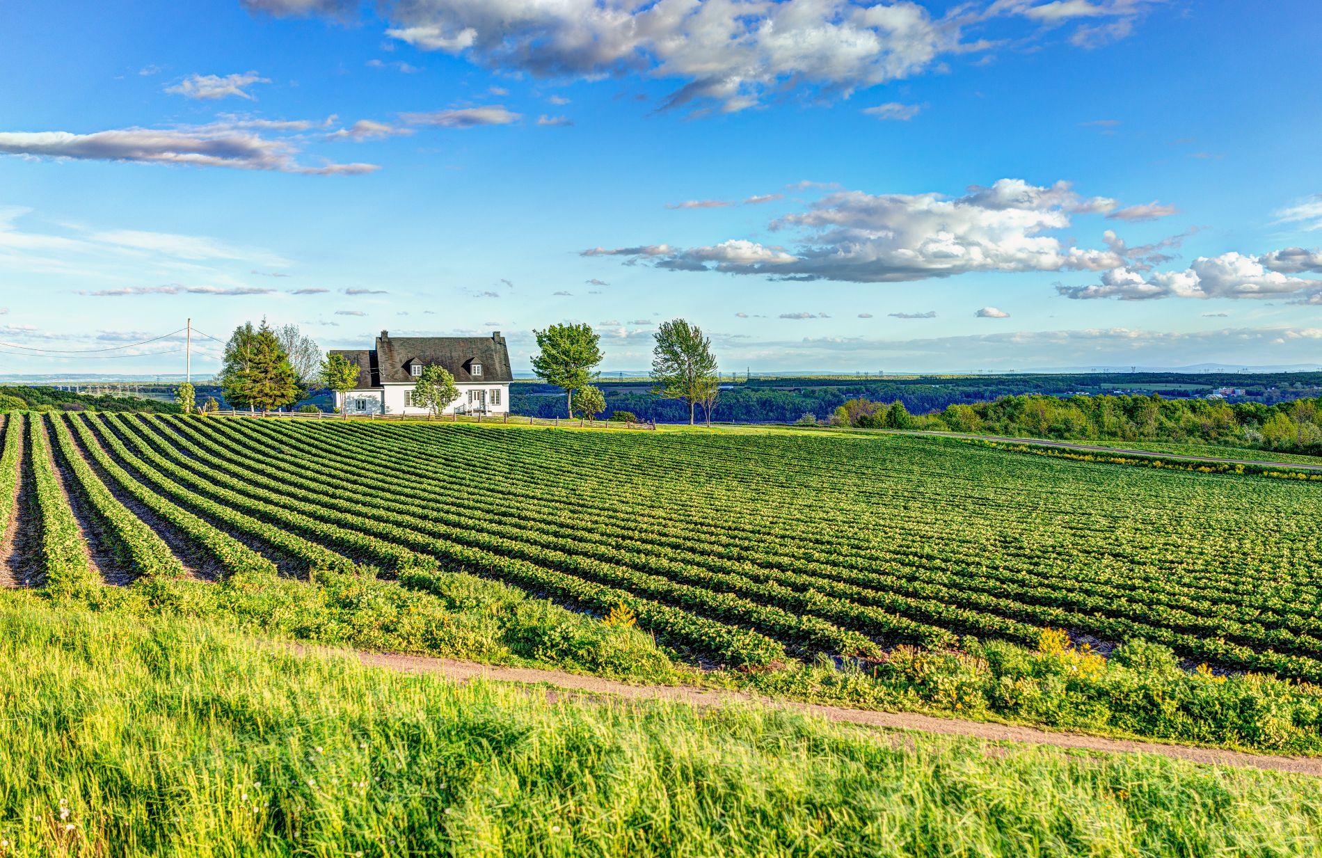 Quoi faire au Québec - Sortie en couple - À la dRoute